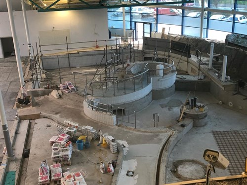 Update on NSC swimming pool refurbishment